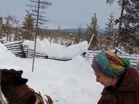 Настя кормит оленей