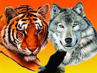 Встреча с Животным Силы. Мастер-класс по шаманским практикам - 14 и 28 ноября 2014 года