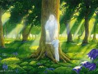 Шаманское консультирование - как понимать ответы духов