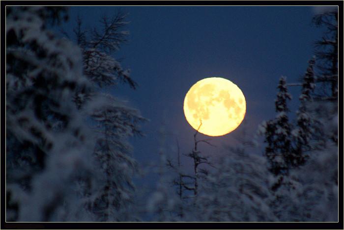 Лунный Новый год